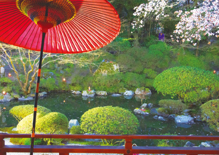 Mii Garden